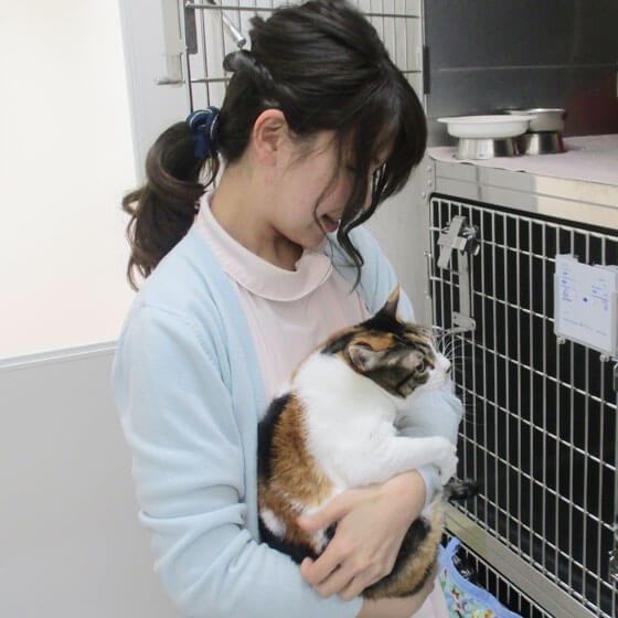 入院動物の動物のお世話